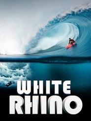 White Rhino [2019]