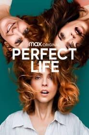مشاهدة مسلسل perfect life مترجم