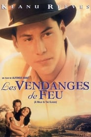 Les vendanges de feu en streaming