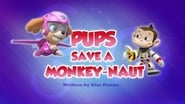 Pups Save a Monkey-naut