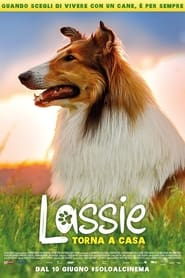Lassie torna a casa 2020