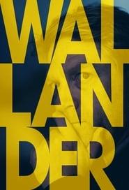 Wallander Season 0