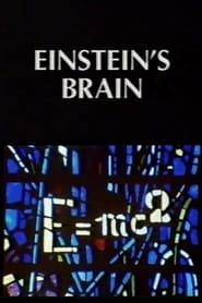 Relics: Einstein's Brain (1994)