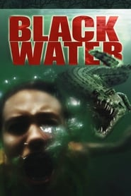 Black Water (2007) Dual Audio [Tamil-Hindi-ENG] HDRip 720p | GDRive