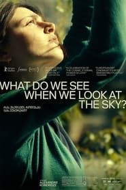 What Do We See When We Look at the Sky? (2021)