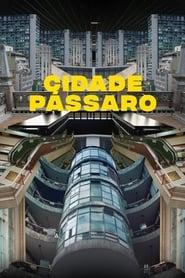 Cidade Pássaro (Shine Your Eyes)