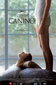 Canino 2009