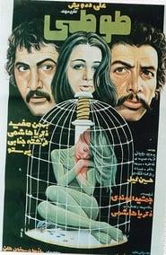 طوطی 1977