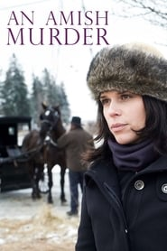 Image An Amish Murder 2013
