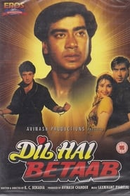 Dil Hai Betaab 1993 Hindi Movie AMZN WebRip 300mb 480p 1GB 720p 3GB 4GB 1080p