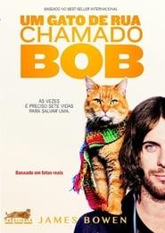 Um Gato de Rua Chamado Bob Legendado Online