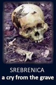 Srebrenica: A Cry from the Grave (1999) Oglądaj Film Zalukaj Cda