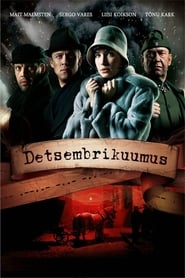 Detsembrikuumus (2008)