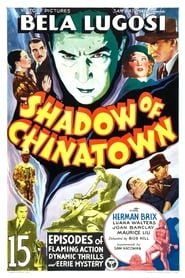 Shadow of Chinatown