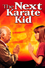 Poster for The Next Karate Kid