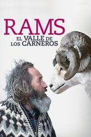 Ver Rams y Latino (El valle de los carneros) Online HD Español (2015)