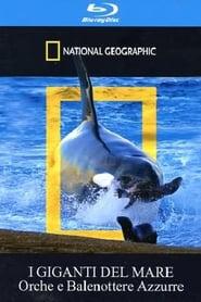 Ver Escuela de orcas asesinas Online HD Español y Latino (2009)