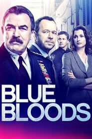 Blue Bloods - Specials