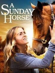 Niedzielny koń