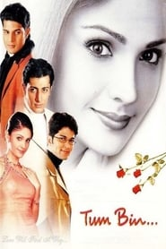 Tum Bin 2001 Hindi Movie AMZN WebRip 400mb 480p 1.2GB 720p 4GB 14GB 1080p