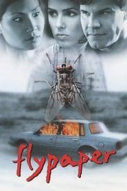 Flypaper (1998)