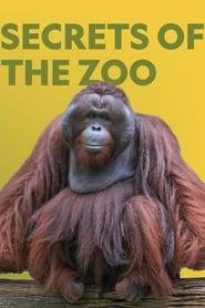 Secrets of the Zoo: Season 3