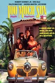 Too Much Sun (1990)