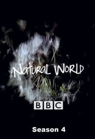 Natural World Season 4