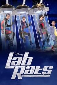 Lab Rats – Copiii bionici Sezonul 1 Episodul 9