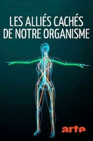 مشاهدة فيلم Fascinating Fasciae: The Hidden World Under Our Skin مترجم