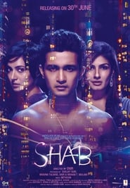 Shab (2017) DVDRip Hindi Full Movie Watch Online Free