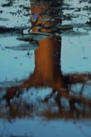 Trees 2001