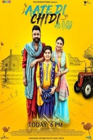Aate Di Chidi (2018) Punjabi Full Movie Watch Online HD Print Free Download