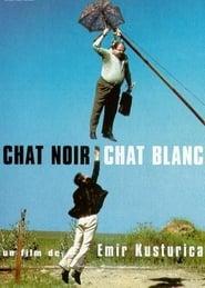 Regarder Chat noir, Chat blanc