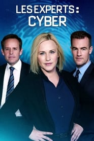 Les Experts : Cyber en streaming