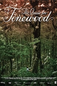 The Quest for Tonewood 2021