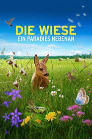 Die Wiese: Ein Paradies nebenan (2019)