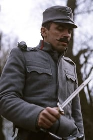Zoltán Bezerédy