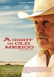 Poster A Night in Old Mexico 2013