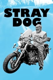 Poster for Stray Dog