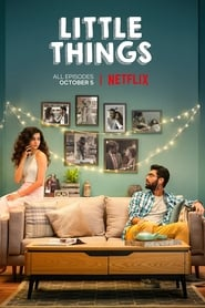 Little Things (Web Series)
