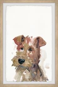 Dog (2021)