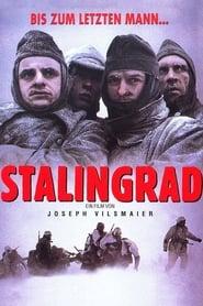 Poster Stalingrad 1993