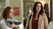 Grey's Anatomy Season 9 Episode 8 : Love Turns You Upside Down