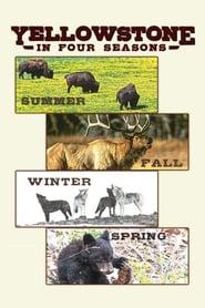 Yellowstone in Four Seasons (17                     ) Online Cały Film Lektor PL