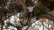 """Modern Family"" When a Tree Falls"