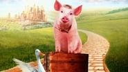 Babe, le cochon dans la ville images