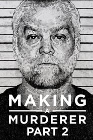 Making a Murderer Season 2 Episode 9
