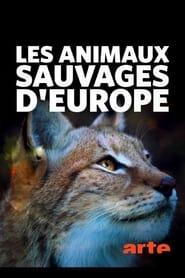 Les animaux sauvages d'Europe 2020