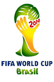 Stories of the 2014 FIFA World Cup